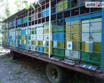 Пчелка Пчелка, объемом двигателя 0 л и пробегом 1 тыс. км за 2500 $, фото 1 на Automoto.ua