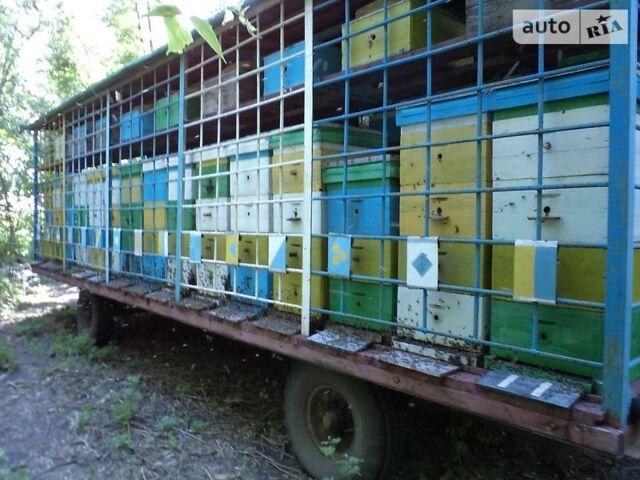 Бджілка Пчелка, об'ємом двигуна 0 л та пробігом 1 тис. км за 2186 $, фото 1 на Automoto.ua