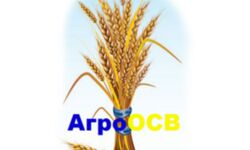 Логотип АгроОСВ