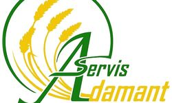 Логотип Адамант-Сервис